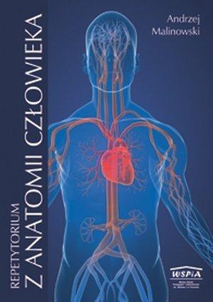 Repetytorium z anatomii człowieka cz. 2