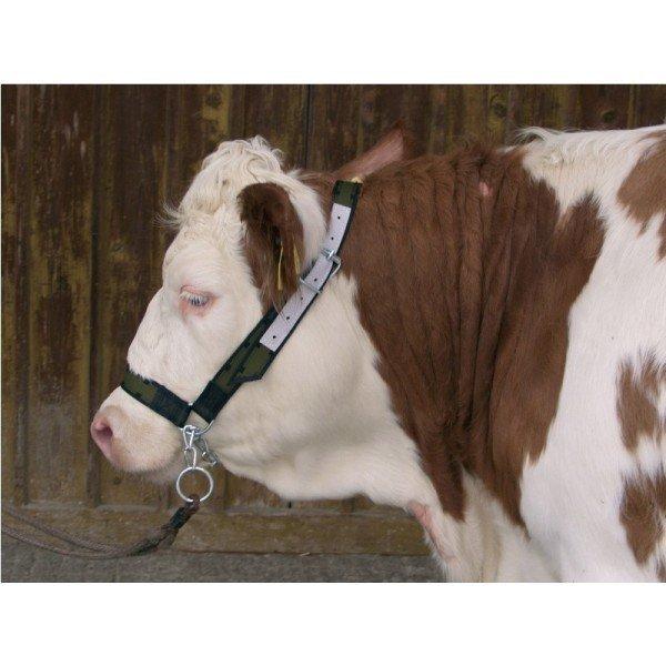 Kantar dla bydła z łańcuchem Profi, zielony