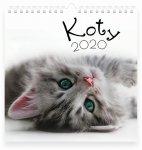 Kalendarz ścienny planszowy KOTY 2020  (72768)