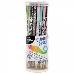 Ołówek szkolny trójkątny HB SERCA (OTNKA)
