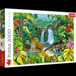 TREFL Puzzle 2000 el. Las tropikalny (27104)