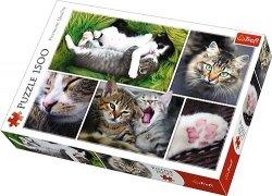 TREFL Puzzle 1500 el. Kocie sprawy - Kolaż (26145)