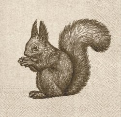 Serwetki dekoracyjne We Care Squirrel WIEWIÓRKA 33x33 cm (SDL016300)