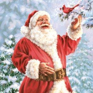 Serwetki świąteczne bożonarodzeniowe MIKOŁAJ Maki (SLGW018901)