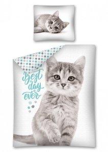 Komplet pościeli pościel CAT Kotek 160 x 200 cm (2870)