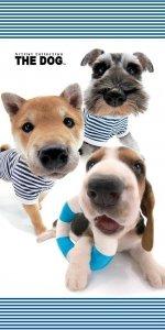 Ręcznik plażowy kąpielowy THE DOG (DOG03BT)