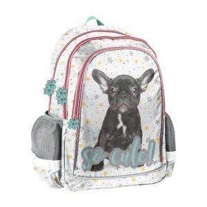Plecak szkolny Pieski BULDOG Paso (PP20BU-081)