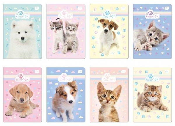 Zeszyt A5 w kratkę 16 kartek Puppy Sign mix (26921)