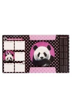 Teczka rysunkowa A4 z gumką STARPAK  Panda BIAŁA (447889)