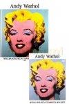 Andy Warhol. Wielka kolekcja sławnych malarzy, tom 30 płyta DVD