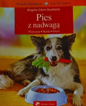 Pies z nadwaga. Przczyny, skutki, dieta. Porady domowe zwierzęta