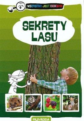 Przyroda  Sekrety lasu