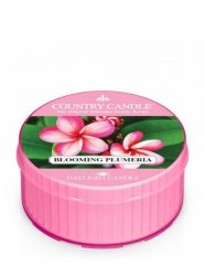 Country Candle - Blooming Plumeria - Daylight (35g)