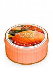 Kringle Candle - Pumpkin Patch - Świeczka zapachowa - Daylight (35g)