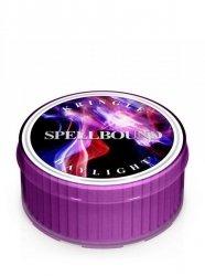 Kringle Candle - Spellbound - Świeczka zapachowa - Daylight (35g)