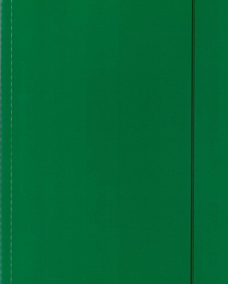 Teczka A4 z gumką - zielona