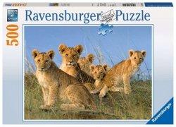 Ravensburger Puzzle 500 Elementów Lwiątka