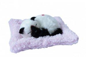 ASKATO Maskotka interaktywna Śpiący kotek biało-czarny na poduszce