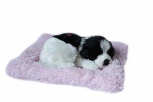 ASKATO Maskotka interaktywna Śpiący piesek na poduszcze - biało-czarny