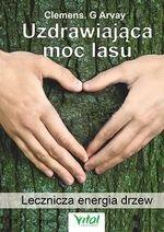 Uzdrawiająca moc lasu. Lecznicza energia drzew i roślin
