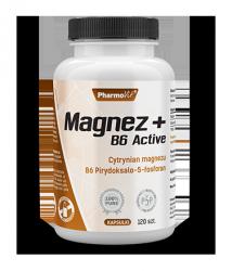 Magnez + B6 Active 120 tabl pharmovit