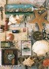 Puzzle 1000 Ravensburger 194797 Morskie Znaleziska