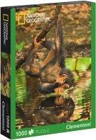 Puzzle 1000 Clementoni 39301 Szympans - National Geographic