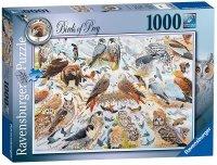 Puzzle 1000 Ravensburger 195596 Ptaki Drapieżne