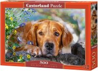 Puzzle 500 Castorland B-52622 Pies - Golden Innocence