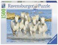 Puzzle 1500 Ravensburger 162857 Białe Konie