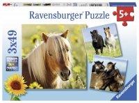 Puzzle 3x49 Ravensburger 080113 Konie 3w1