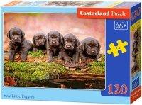 Puzzle 120 Castorland B-13418 Małe Pieski