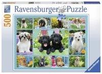 Puzzle 500 Ravensburger 147083 Psy - Kolaż