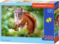 Puzzle 260 Castorland B-27422 Wiewiórka