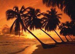 Puzzle 500 Schmidt 58193 Zachód Słońca na Tropikalnej Wyspie