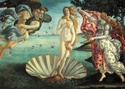 Puzzle 1000 Piatnik P-5421 Botticelli - Narodziny Venus