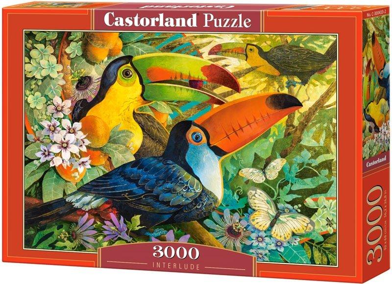 Puzzle 3000 Castorland C-300433 Ptaki