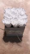 Nowość!Białe żywe WIECZNE róże w kwadratowym kremowym velvet boxie