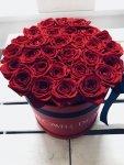 Czerwone żywe róże w dużym czerwonym boxie