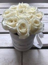 Białe żywe róże w małym białym boxie