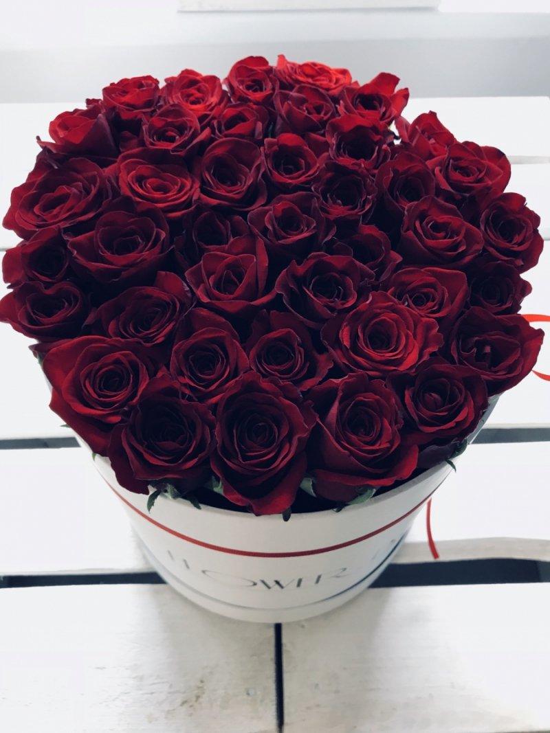 Czerwone żywe róże w dużym białym boxie