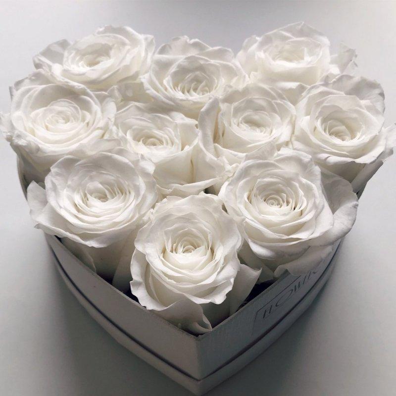 Białe wieczne róze w małym boxe heart