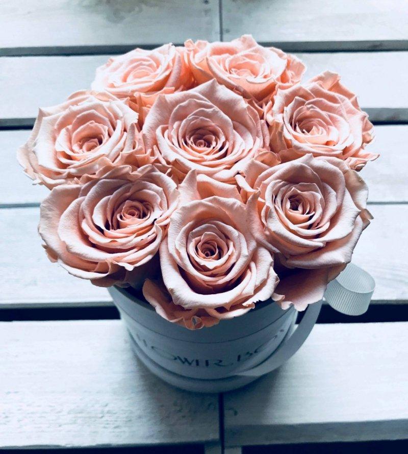 Brzoskwiniowe żywe WIECZNE róże w małym białym boxie