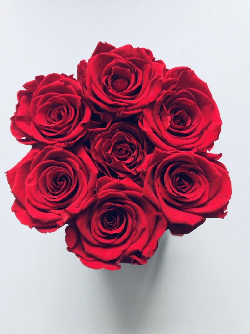 Czerwone żywe WIECZNE róże w małym czarnym boxie XS