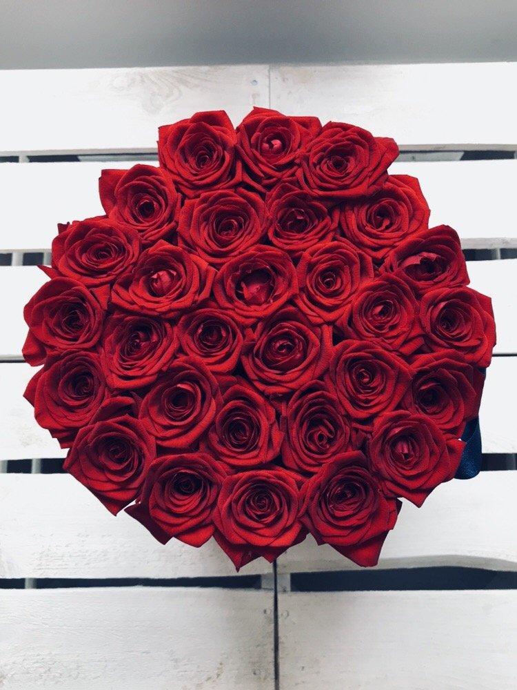 Róże żywe duży czerwony box