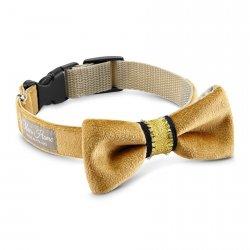 Bow Tie Magnifique gold