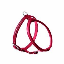Harness MODERN ART ROUND red