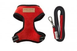 Harness CANDY red