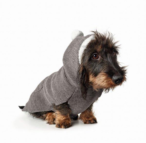 Sweter ROGLA szary