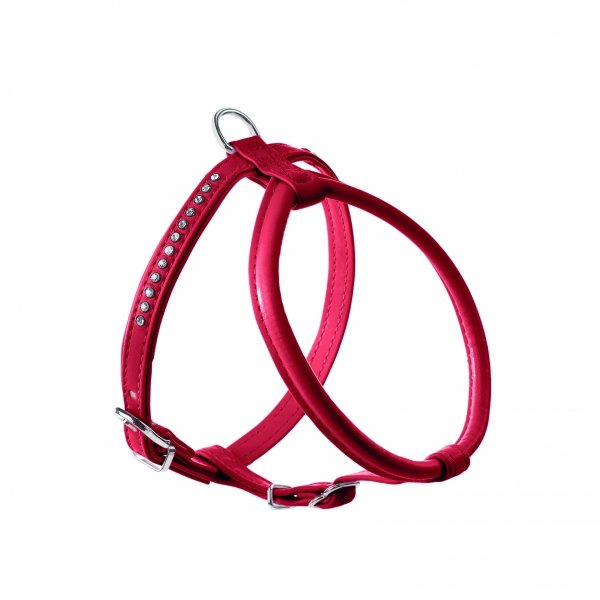 Harness MODERN ART ROUND red Hunter